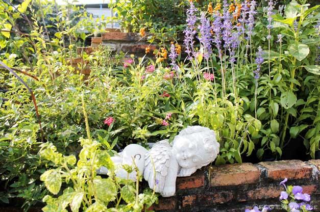 จัดสวนหน้าบ้านสไตล์ยุโรป สวนสวยสำหรับบ้านพื้นที่น้อย Cottage Garden 4