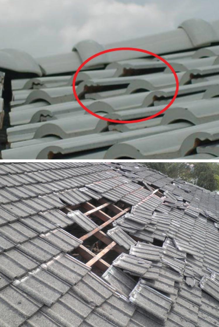 5 ปัญหาหลังคาและแนวทางป้องกัน สำหรับบ้านสร้างใหม่ 1