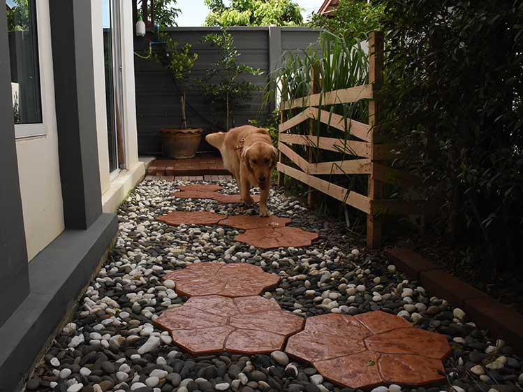 ไอเดียจัดสวนสวยให้ลงตัวกับทั้งเจ้าของบ้านและสัตว์เลี้ยงที่รัก 3