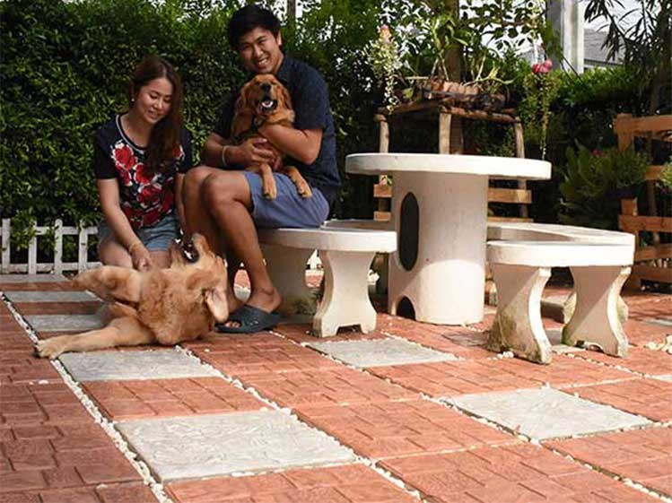 ไอเดียจัดสวนสวยให้ลงตัวกับทั้งเจ้าของบ้านและสัตว์เลี้ยงที่รัก 5