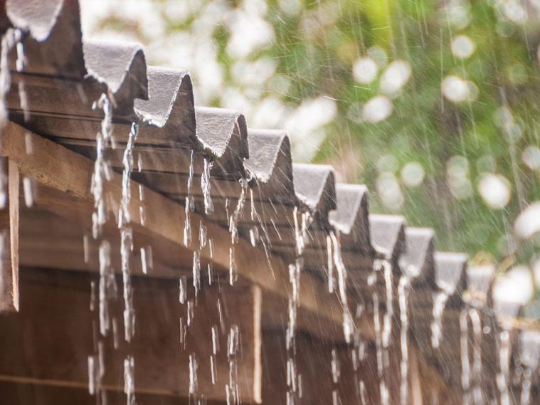 สวนพัง ผนังเปื้อน เพื่อนบ้านบ่น รางน้ำฝนช่วยได้ 3