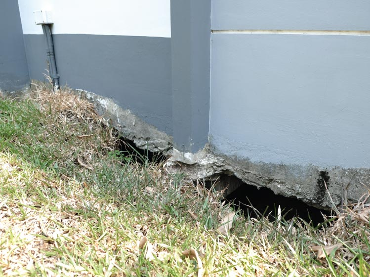 ปิดโพรงใต้บ้าน แก้ปัญหาดินรอบบ้านทรุด