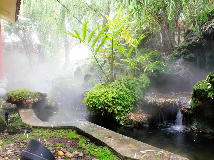 6 วิธีจัดสวนสวยทิศตะวันตก คลายร้อนให้บ้านเย็น 3