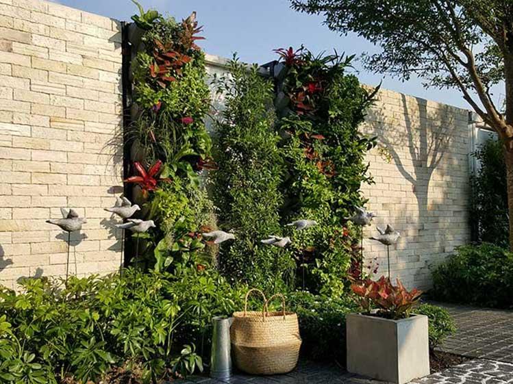 6 วิธีจัดสวนสวยทิศตะวันตก คลายร้อนให้บ้านเย็น 5