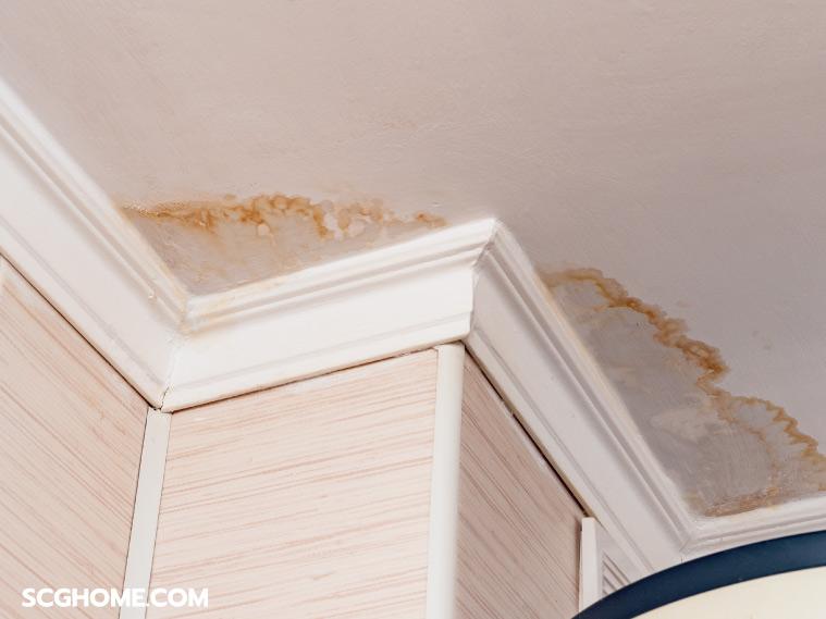 ภาพ: ตัวอย่างคราบน้ำบนฝ้าเพดานจากปัญหาหลังคารั่ว