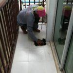 งานซ่อมแซมบ้าน หลังคา หน้าต่าง ปูกระเบื้อง 14